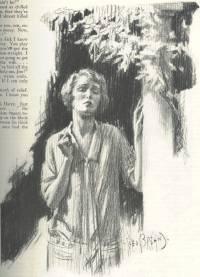 Brehm illustration