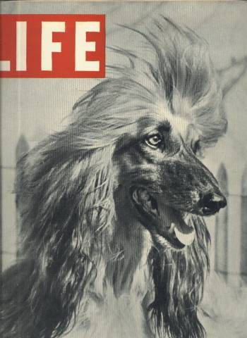 Life Magazine November 26 1945